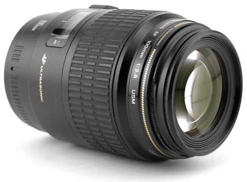 MBP_Macro_Beauty_CanonEF100mm_2.8